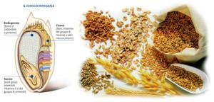 cereali-integrali_1-2