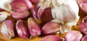 spicchi-aglio-rosso-sulmona