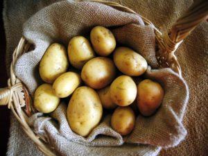 patata-di-montagna-del-medio-sangro